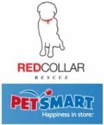 RCR Petsmart