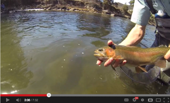 Tenkara Video - In Search of Tenkara