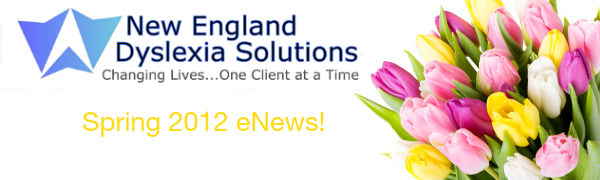 New England Dyslexia Solutions' Winter 2011 eNewsletter!