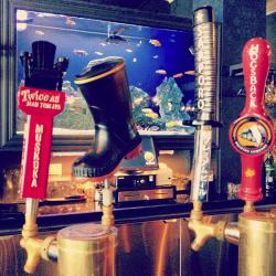 NEW BEERS ON TAP!