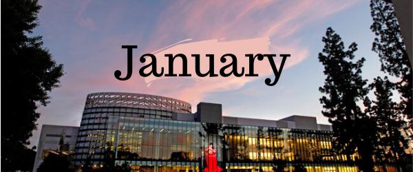 Decorative Image: January
