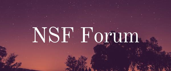 Decorative Image: NSF Forum