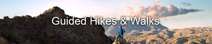 Guided Hikes & Walks