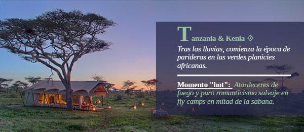 Tanzania& Kenia. Tras las lluvias, comienza la época de parideras en las verdes planicies africanas.