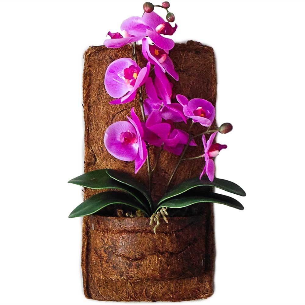 Arranjo Orquideas Roxas no Vaso Xaxim