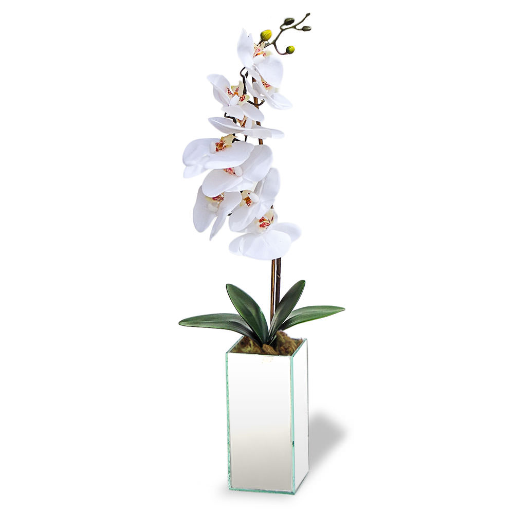 Arranjo Orquideas Brancas Vaso Espelhado