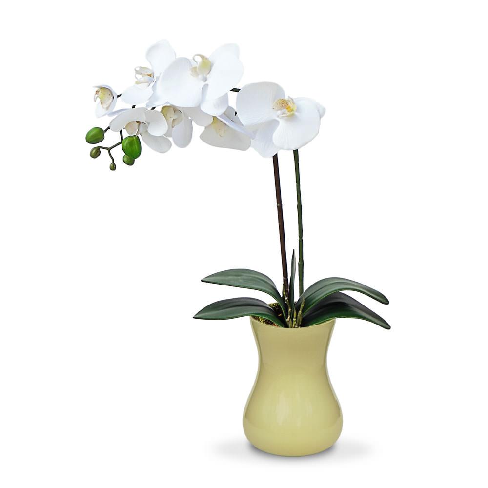 Arranjo Orquideas no Vaso Bege