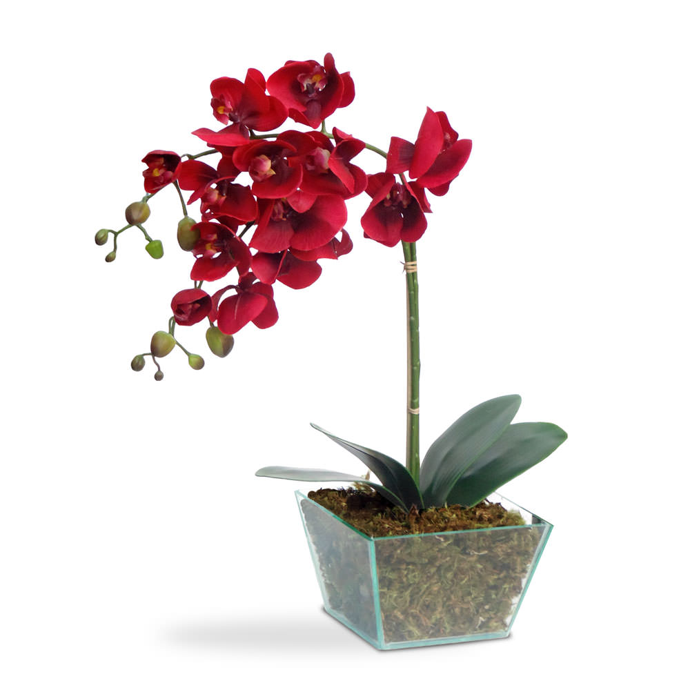 Arranjo de Flores Artificiais Orquidea Vermelha Vaso Vidro