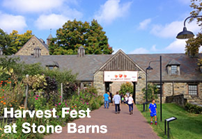 [PHOTO] Harvest Fest at Stone Barns