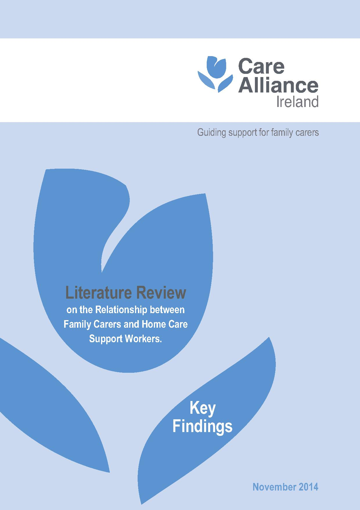 Front cover of CAI literature review