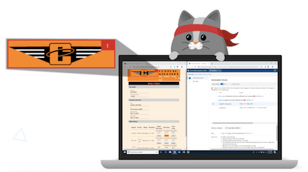 A comic cat behind a laptop which has the Accessibility Insights check open
