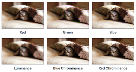 Six identical photos of a cat hiding under a blanket. The photos illustrate the impact of subsampling. From top-left to bottom-right: red, green, blue, luminance, blue chrominance, and red chrominance.