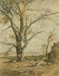 Oliver Hall RA RE RWS - Signed 1951 Oil, Sycamore Tree