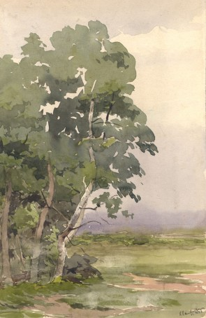 Claude Hayes (1852-1922) - Signed Watercolour, Trees in Silhouette