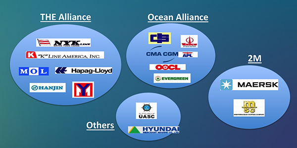 Shipping line alliances