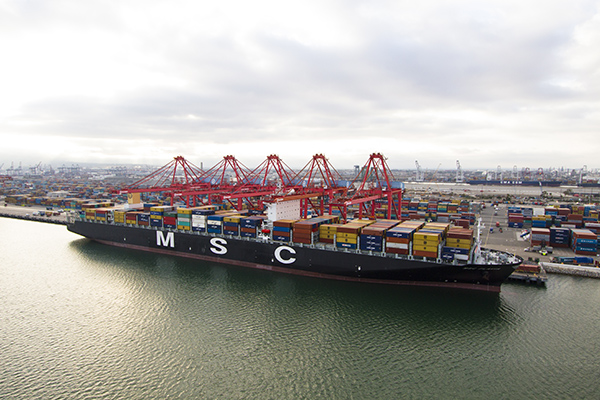MSC Flavia at dock at Pier T, Port of Long Beach