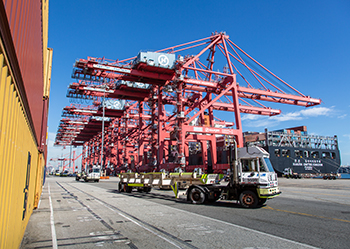 Nine cranes working Hanjin United Kingdom