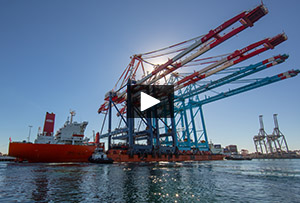 Cranes delivered to Middle Harbor