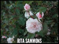 Rita Sammons