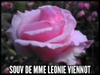 Souvenir de Mme. Leonie Viennot
