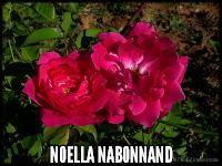 Noella Nabonnand
