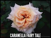 Caramella Fairy Tale™®