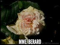 Mme Berard (Adam)