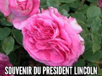 Souvenir du President Lincoln