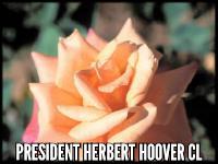 President Herbert Hoover Cl.