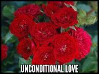 Unconditional Love™