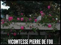 Vicomtesse Pierre de Fou