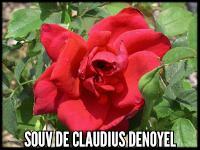 Souvenir de Claudius Denoyel