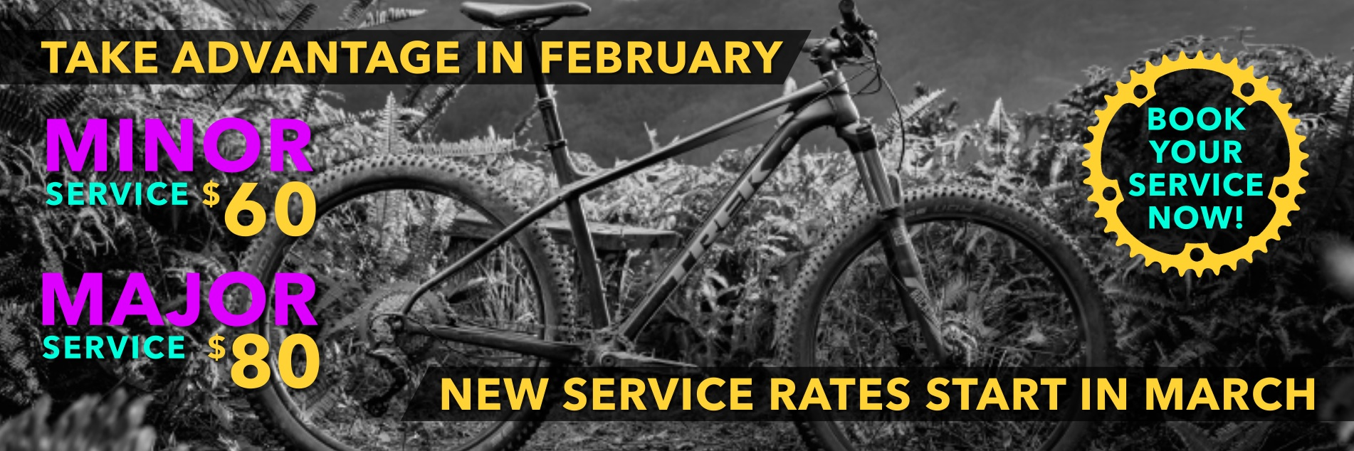Take Advantage In February, New Service Rates Start In March - West Point Cycles