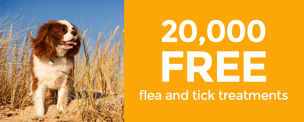 20,000 free flea & tick treatments