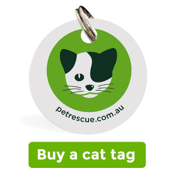 Buy a cat tag