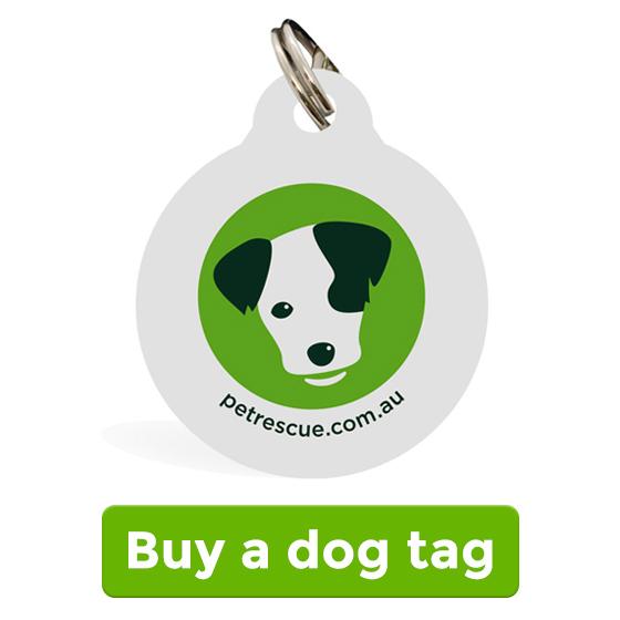 Buy a dog tag