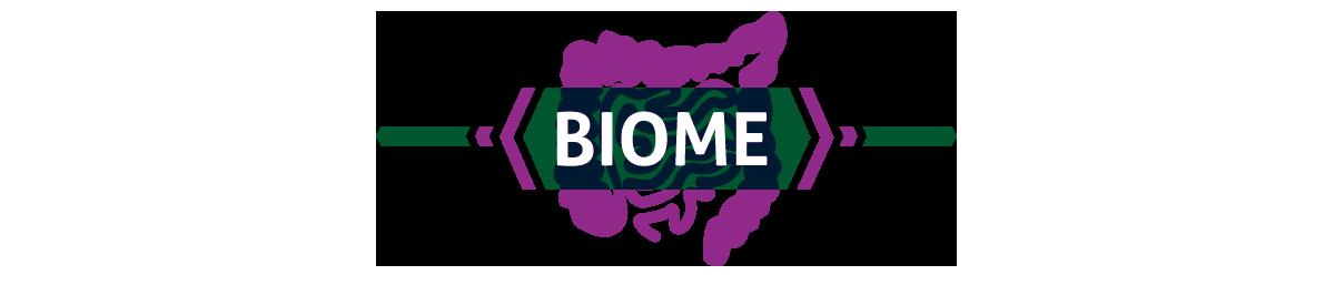 Biome (image)