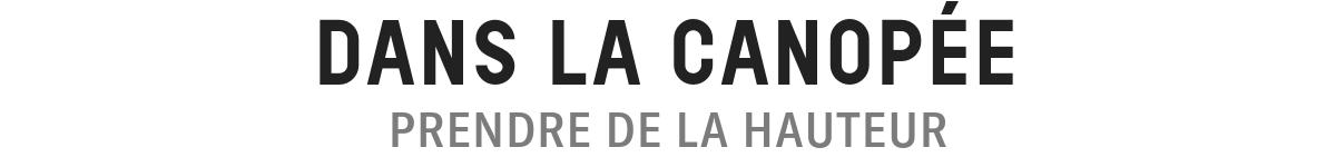 DANS LA CANOPEE