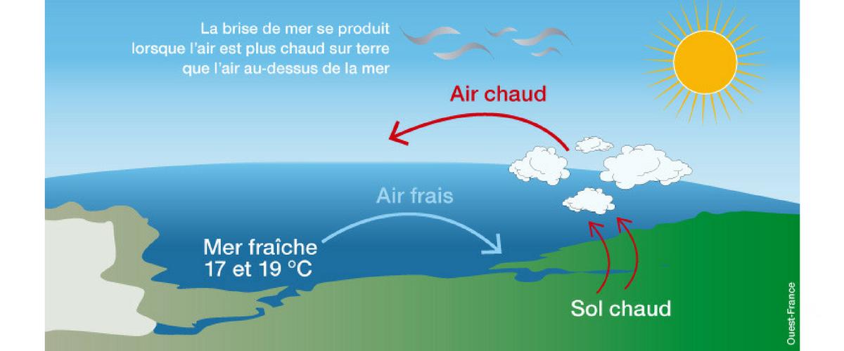 schema thermique