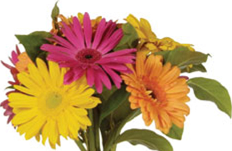 Kristin School Bouquets