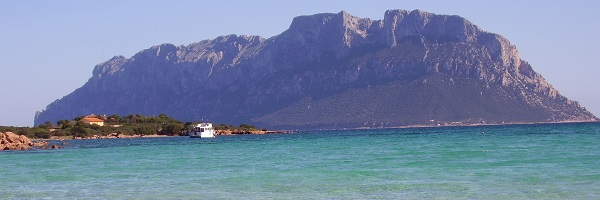 Olbia by private jet