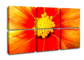 Six Panel Flower Canvas