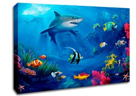 Shark Canvas