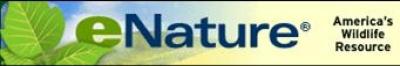 eNature.com
