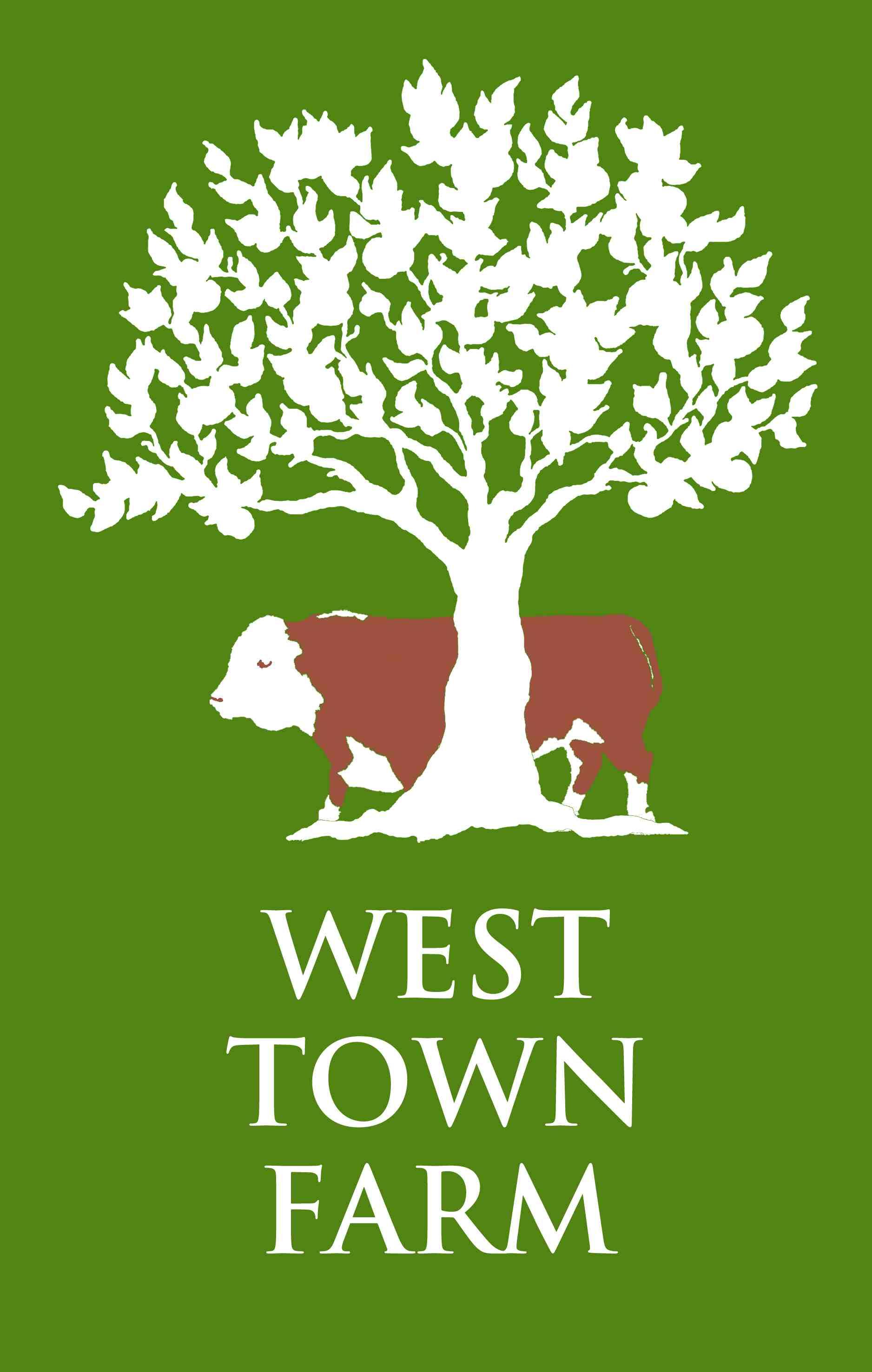 Apple and Pumpkin Day @ West Town Farm | Ide | United Kingdom