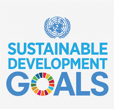 Share-Net Interactive Session: Realizing the SDGs in the Netherlands and beyond