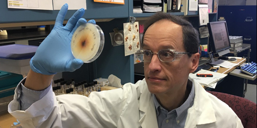 Ed Kaiser, research technologist, of the Penn State Mushroom Spawn Lab