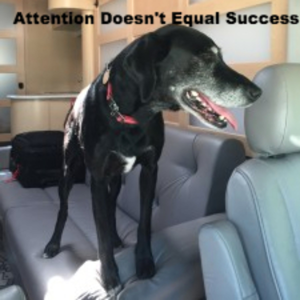 Attention Doesn't Equal Sucess