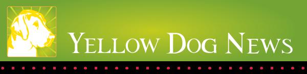 Yellow Dog News