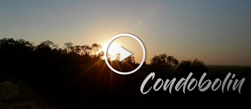Condobolin - play video